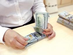 Tỷ giá ngoại tệ hôm nay (21/9): Đồng NDT giảm 7 đồng, USD và Euro đứng giá