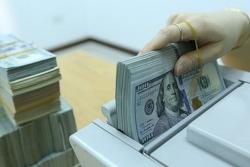 Tỷ giá ngoại tệ hôm nay (19/9): Euro tăng mạnh 170 đồng, USD đứng giá
