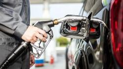 Giá xăng dầu tuần qua: Dầu thô tăng ổn định, xăng trong nước không biến động