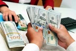 Tỷ giá ngoại tệ hôm nay 1/7: USD tăng, EURO quay đầu giảm
