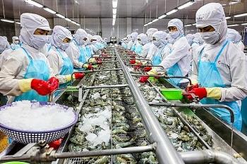 Bộ Công Thương khuyến cáo doanh nghiệp xuất khẩu sang Ấn Độ cần mua bảo hiểm với tất cả các lô hàng