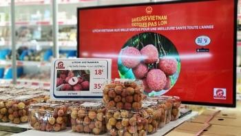 Vải thiều Việt Nam đắt khách tại Pháp với giá 500.000 đồng/kg