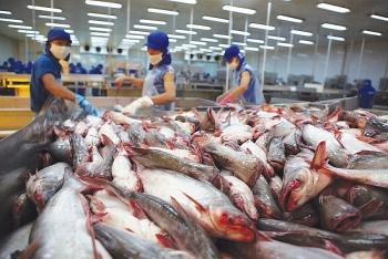 Xuất khẩu thủy sản Việt Nam vào EU tăng đột biến