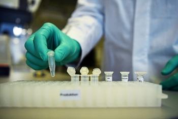 Mỹ sẽ cấp phép vaccine trước khi giai đoạn thử nghiệm 3 hoàn thành?