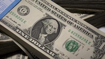 Tỷ giá ngoại tệ hôm nay (14/10): USD tăng nhẹ, Euro