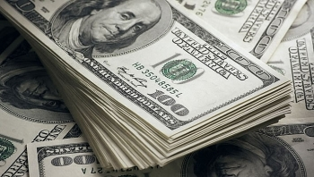Tỷ giá ngoại tệ hôm nay (20/10): USD tiếp tục đi ngang, NDT tăng 11 đồng