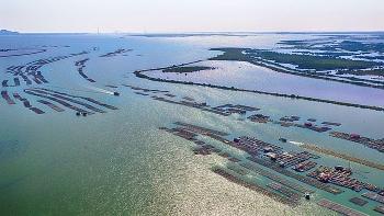 Chính thức thành lập Khu kinh tế ven biển Quảng Yên, tỉnh Quảng Ninh