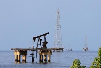 Nhận định giá xăng dầu tuần tới (23/11-29/11): Dầu vẫn sẽ bị chững giá?