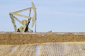 Giá xăng dầu hôm nay (31/12): Dầu thô giữ vững đà tăng