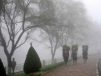 Thời tiết 10 ngày tới (3/1- 13/1): Rét đậm rét hại, Bắc Bộ bắt đầu có mưa