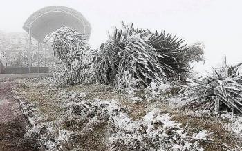Thời tiết ngày mai 10/1: Không khí lạnh tăng cường, Bắc Bộ tiếp tục rét hại