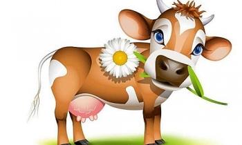 Top con giáp xui xẻo nhất tuần này (29/3-04/4): Hao tài tốn của, gặp phải tiểu nhân