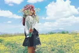 tu vi chiem tinh ngay 216 ve tinh yeu cua 12 con giap tuoi suu tuoi dan co van dao hoa