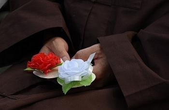 Ý nghĩa bông hồng cài ngực áo trong ngày lễ Vu Lan