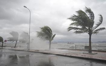 Thông tin khẩn cấp bão số 5: 12 giờ tới cách Đà Nẵng 220km, gió giật cấp 13