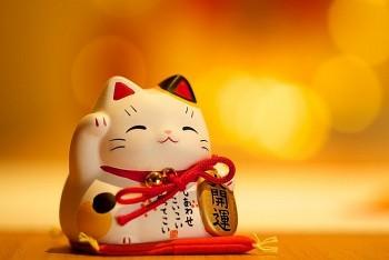 Tử vi tuần mới tuổi Mão (27/9 đến 3/10/2021): Kinh doanh thuận lợi, tiền đồ rộng mở