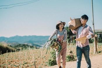 Tử vi, chiêm tinh ngày mới 10/10/2020 về tình yêu của 12 con giáp: Mão tình duyên hanh thông thuận lợi