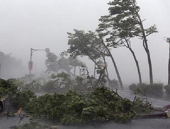 Diễn biến bão số 7: Đất liền ven biển đã có gió mạnh cấp 9