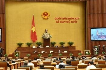 Dự án Luật Phòng, chống ma túy (sửa đổi) được Chính phủ trình Quốc hội trong chiều nay
