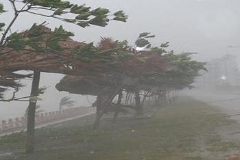Diễn biến bão số 12: Đã đạt cực đại, bắt đầu suy yếu dần