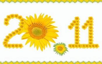 Lời chúc 20/11 ý nghĩa dành tặng mẹ mừng ngày nhà giáo Việt Nam