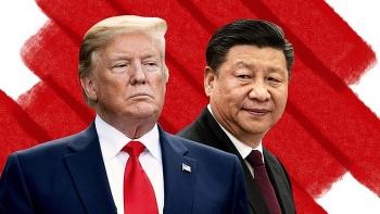 Chiến dịch săn cáo của Trung Quốc gặp khó khăn khi căng thẳng Mỹ - Trung leo thang