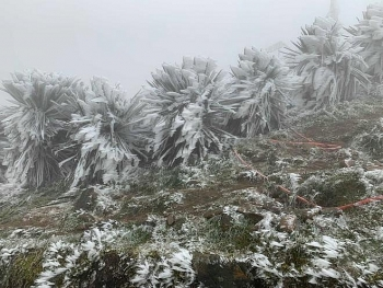 Ngày đầu đón không khí lạnh Mẫu Sơn lạnh 3,1 độ C, miền Bắc dao động 7-11 độ C