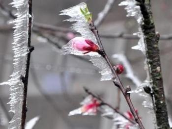 Thông tin không khí lạnh hôm nay: Đỉnh Mẫu Sơn xuống 1,1 độ C