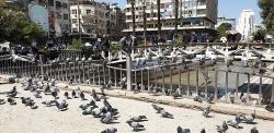 mot syria binh yen quyen ru phia sau khung bo xung dot